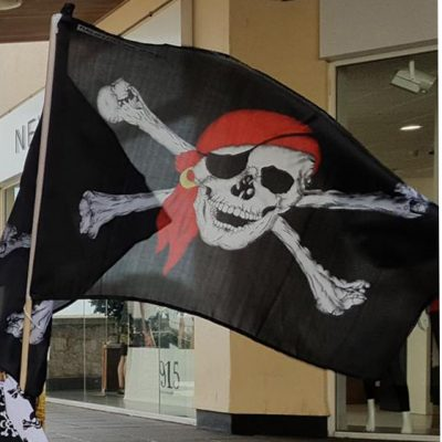 Pirate flag 2 colour